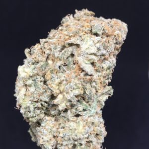 Sour Diesel feb 2021 - Kind Flowers - Weed Delivery Toronto - Cannabis Delivery Toronto - Marijuana Delivery Toronto - Weed Edibles Delivery Toronto - Kush Delivery Toronto - Same Day Weed Delivery in Toronto - 24/7 Weed Delivery Toronto - Hash Delivery Toronto Weed Delivery Toronto - Cannabis Delivery Toronto - Marijuana Delivery Toronto - Weed Edibles Delivery Toronto - Kush Delivery Toronto - Same Day Weed Delivery in Toronto - 24/7 Weed Delivery Toronto - Hash Delivery Toronto - We are Kind Flowers - Premium Cannabis Delivery in Toronto with over 200 menu items. We're an experienced weed delivery in Toronto and we deliver all orders in a smell-proof, discreet package straight to your door. Proudly Canadian and happy to always serve you. We offer same day weed delivery toronto, cannabis delivery toronto, kush delivery toronto, edibles weed delivery toronto, hash delivery toronto, 24/7 weed delivery toronto, weed online delivery toronto