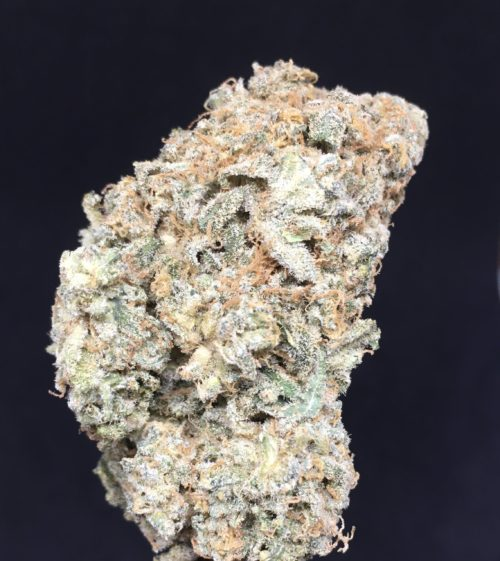 Sour Diesel feb 2021 - Sour Diesel (AAAA) Sativa Craft Cannabis From The Helpful Cannabis Weed Delivery Toronto - Cannabis Delivery Toronto - Marijuana Delivery Toronto - Weed Edibles Delivery Toronto - Kush Delivery Toronto - Same Day Weed Delivery in Toronto - 24/7 Weed Delivery Toronto - Hash Delivery Toronto - We are Kind Flowers - Premium Cannabis Delivery in Toronto with over 200 menu items. We're an experienced weed delivery in Toronto and we deliver all orders in a smell-proof, discreet package straight to your door. Proudly Canadian and happy to always serve you. We offer same day weed delivery toronto, cannabis delivery toronto, kush delivery toronto, edibles weed delivery toronto, hash delivery toronto, 24/7 weed delivery toronto, weed online delivery toronto