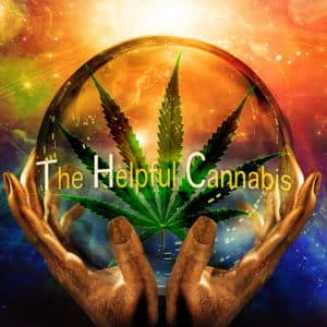 ThcLogoCrop - Kind Flowers - Weed Delivery Toronto - Cannabis Delivery Toronto - Marijuana Delivery Toronto - Weed Edibles Delivery Toronto - Kush Delivery Toronto - Same Day Weed Delivery in Toronto - 24/7 Weed Delivery Toronto - Hash Delivery Toronto Weed Delivery Toronto - Cannabis Delivery Toronto - Marijuana Delivery Toronto - Weed Edibles Delivery Toronto - Kush Delivery Toronto - Same Day Weed Delivery in Toronto - 24/7 Weed Delivery Toronto - Hash Delivery Toronto - We are Kind Flowers - Premium Cannabis Delivery in Toronto with over 200 menu items. We're an experienced weed delivery in Toronto and we deliver all orders in a smell-proof, discreet package straight to your door. Proudly Canadian and happy to always serve you. We offer same day weed delivery toronto, cannabis delivery toronto, kush delivery toronto, edibles weed delivery toronto, hash delivery toronto, 24/7 weed delivery toronto, weed online delivery toronto