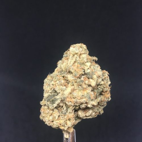 ld2 1 scaled - Lilac Diesel AAAA *** NEW FIRE By Ethos Genetics (Sativa) Leaning Hybrid Weed Delivery Toronto - Cannabis Delivery Toronto - Marijuana Delivery Toronto - Weed Edibles Delivery Toronto - Kush Delivery Toronto - Same Day Weed Delivery in Toronto - 24/7 Weed Delivery Toronto - Hash Delivery Toronto - We are Kind Flowers - Premium Cannabis Delivery in Toronto with over 200 menu items. We're an experienced weed delivery in Toronto and we deliver all orders in a smell-proof, discreet package straight to your door. Proudly Canadian and happy to always serve you. We offer same day weed delivery toronto, cannabis delivery toronto, kush delivery toronto, edibles weed delivery toronto, hash delivery toronto, 24/7 weed delivery toronto, weed online delivery toronto
