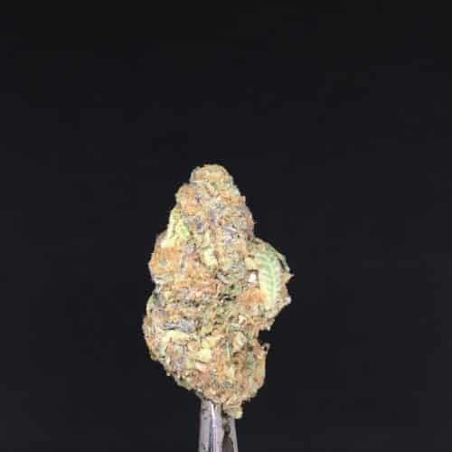 wedding crasher 1 scaled - Wedding Crasher B.C Craft Quad Supreme Kind Cans Sativa Leaning Hybrid Weed Delivery Toronto - Cannabis Delivery Toronto - Marijuana Delivery Toronto - Weed Edibles Delivery Toronto - Kush Delivery Toronto - Same Day Weed Delivery in Toronto - 24/7 Weed Delivery Toronto - Hash Delivery Toronto - We are Kind Flowers - Premium Cannabis Delivery in Toronto with over 200 menu items. We're an experienced weed delivery in Toronto and we deliver all orders in a smell-proof, discreet package straight to your door. Proudly Canadian and happy to always serve you. We offer same day weed delivery toronto, cannabis delivery toronto, kush delivery toronto, edibles weed delivery toronto, hash delivery toronto, 24/7 weed delivery toronto, weed online delivery toronto