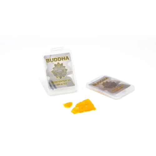 buddha shatter original - Kind Flowers