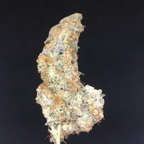 black dolato 2 scaled - Black Dolato B.C Craft Cannabis Indica Leaning Hybrid (AAAA+) Weed Delivery Toronto - Cannabis Delivery Toronto - Marijuana Delivery Toronto - Weed Edibles Delivery Toronto - Kush Delivery Toronto - Same Day Weed Delivery in Toronto - 24/7 Weed Delivery Toronto - Hash Delivery Toronto - We are Kind Flowers - Premium Cannabis Delivery in Toronto with over 200 menu items. We're an experienced weed delivery in Toronto and we deliver all orders in a smell-proof, discreet package straight to your door. Proudly Canadian and happy to always serve you. We offer same day weed delivery toronto, cannabis delivery toronto, kush delivery toronto, edibles weed delivery toronto, hash delivery toronto, 24/7 weed delivery toronto, weed online delivery toronto
