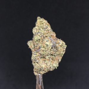 la kush cake 1 - Reviews Weed Delivery Toronto - Cannabis Delivery Toronto - Marijuana Delivery Toronto - Weed Edibles Delivery Toronto - Kush Delivery Toronto - Same Day Weed Delivery in Toronto - 24/7 Weed Delivery Toronto - Hash Delivery Toronto - We are Kind Flowers - Premium Cannabis Delivery in Toronto with over 200 menu items. We're an experienced weed delivery in Toronto and we deliver all orders in a smell-proof, discreet package straight to your door. Proudly Canadian and happy to always serve you. We offer same day weed delivery toronto, cannabis delivery toronto, kush delivery toronto, edibles weed delivery toronto, hash delivery toronto, 24/7 weed delivery toronto, weed online delivery toronto