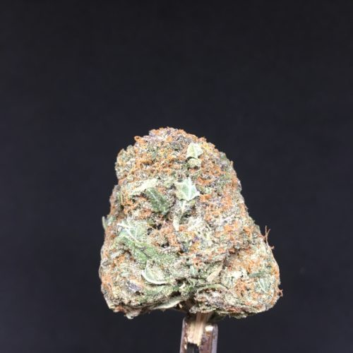 white gold 2 scaled - White Gold Craft B.C Premium Cannabis (AAA+) Indica Leaning Hybrid Weed Delivery Toronto - Cannabis Delivery Toronto - Marijuana Delivery Toronto - Weed Edibles Delivery Toronto - Kush Delivery Toronto - Same Day Weed Delivery in Toronto - 24/7 Weed Delivery Toronto - Hash Delivery Toronto - We are Kind Flowers - Premium Cannabis Delivery in Toronto with over 200 menu items. We're an experienced weed delivery in Toronto and we deliver all orders in a smell-proof, discreet package straight to your door. Proudly Canadian and happy to always serve you. We offer same day weed delivery toronto, cannabis delivery toronto, kush delivery toronto, edibles weed delivery toronto, hash delivery toronto, 24/7 weed delivery toronto, weed online delivery toronto