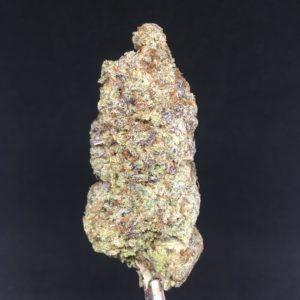 jet fuel 1 - Reviews Weed Delivery Toronto - Cannabis Delivery Toronto - Marijuana Delivery Toronto - Weed Edibles Delivery Toronto - Kush Delivery Toronto - Same Day Weed Delivery in Toronto - 24/7 Weed Delivery Toronto - Hash Delivery Toronto - We are Kind Flowers - Premium Cannabis Delivery in Toronto with over 200 menu items. We're an experienced weed delivery in Toronto and we deliver all orders in a smell-proof, discreet package straight to your door. Proudly Canadian and happy to always serve you. We offer same day weed delivery toronto, cannabis delivery toronto, kush delivery toronto, edibles weed delivery toronto, hash delivery toronto, 24/7 weed delivery toronto, weed online delivery toronto