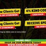 Signature Advertisemenet websitee