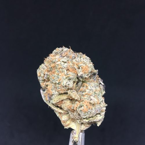 banana hammock bh8 1 scaled - #6 The Blue Sky Special Deal Of The Day Weed Delivery Toronto - Cannabis Delivery Toronto - Marijuana Delivery Toronto - Weed Edibles Delivery Toronto - Kush Delivery Toronto - Same Day Weed Delivery in Toronto - 24/7 Weed Delivery Toronto - Hash Delivery Toronto - We are Kind Flowers - Premium Cannabis Delivery in Toronto with over 200 menu items. We're an experienced weed delivery in Toronto and we deliver all orders in a smell-proof, discreet package straight to your door. Proudly Canadian and happy to always serve you. We offer same day weed delivery toronto, cannabis delivery toronto, kush delivery toronto, edibles weed delivery toronto, hash delivery toronto, 24/7 weed delivery toronto, weed online delivery toronto