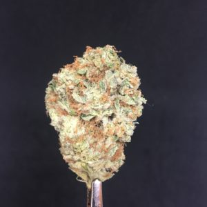 c g 10 2 - Reviews Weed Delivery Toronto - Cannabis Delivery Toronto - Marijuana Delivery Toronto - Weed Edibles Delivery Toronto - Kush Delivery Toronto - Same Day Weed Delivery in Toronto - 24/7 Weed Delivery Toronto - Hash Delivery Toronto - We are Kind Flowers - Premium Cannabis Delivery in Toronto with over 200 menu items. We're an experienced weed delivery in Toronto and we deliver all orders in a smell-proof, discreet package straight to your door. Proudly Canadian and happy to always serve you. We offer same day weed delivery toronto, cannabis delivery toronto, kush delivery toronto, edibles weed delivery toronto, hash delivery toronto, 24/7 weed delivery toronto, weed online delivery toronto