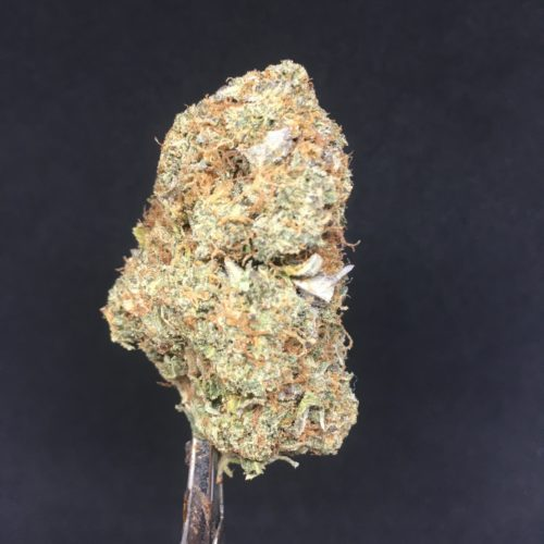 pink kush 1 scaled - Pink Kush (AAAA) Indica *** NEW B.C Craft FIRE Weed Delivery Toronto - Cannabis Delivery Toronto - Marijuana Delivery Toronto - Weed Edibles Delivery Toronto - Kush Delivery Toronto - Same Day Weed Delivery in Toronto - 24/7 Weed Delivery Toronto - Hash Delivery Toronto - We are Kind Flowers - Premium Cannabis Delivery in Toronto with over 200 menu items. We're an experienced weed delivery in Toronto and we deliver all orders in a smell-proof, discreet package straight to your door. Proudly Canadian and happy to always serve you. We offer same day weed delivery toronto, cannabis delivery toronto, kush delivery toronto, edibles weed delivery toronto, hash delivery toronto, 24/7 weed delivery toronto, weed online delivery toronto