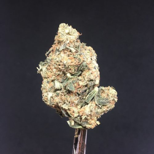tom ford pink 1 scaled - Pink Tom Ford Craft Cannabis AAAA *** NEW CHRONIC Indica Leaning Hybrid Weed Delivery Toronto - Cannabis Delivery Toronto - Marijuana Delivery Toronto - Weed Edibles Delivery Toronto - Kush Delivery Toronto - Same Day Weed Delivery in Toronto - 24/7 Weed Delivery Toronto - Hash Delivery Toronto - We are Kind Flowers - Premium Cannabis Delivery in Toronto with over 200 menu items. We're an experienced weed delivery in Toronto and we deliver all orders in a smell-proof, discreet package straight to your door. Proudly Canadian and happy to always serve you. We offer same day weed delivery toronto, cannabis delivery toronto, kush delivery toronto, edibles weed delivery toronto, hash delivery toronto, 24/7 weed delivery toronto, weed online delivery toronto