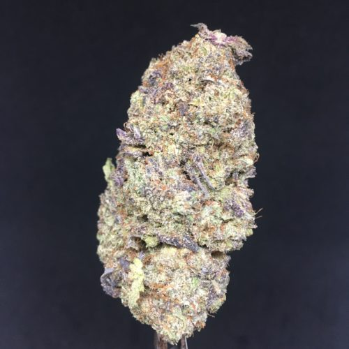 jet fuel 2 scaled - #9 The Chronic Ying Yang Kind Can Deal Weed Delivery Toronto - Cannabis Delivery Toronto - Marijuana Delivery Toronto - Weed Edibles Delivery Toronto - Kush Delivery Toronto - Same Day Weed Delivery in Toronto - 24/7 Weed Delivery Toronto - Hash Delivery Toronto - We are Kind Flowers - Premium Cannabis Delivery in Toronto with over 200 menu items. We're an experienced weed delivery in Toronto and we deliver all orders in a smell-proof, discreet package straight to your door. Proudly Canadian and happy to always serve you. We offer same day weed delivery toronto, cannabis delivery toronto, kush delivery toronto, edibles weed delivery toronto, hash delivery toronto, 24/7 weed delivery toronto, weed online delivery toronto