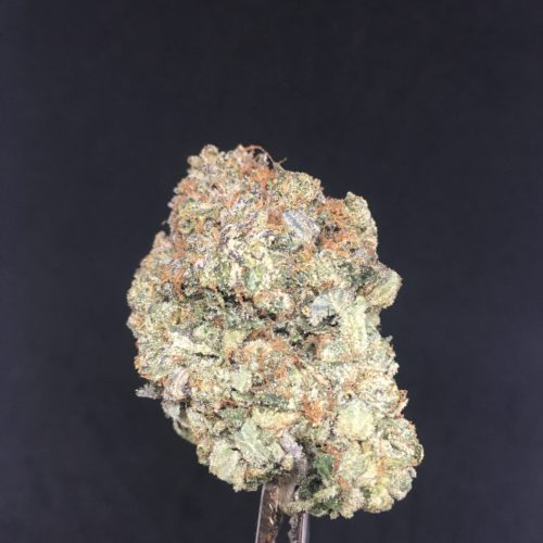 pine tar gas 2 scaled - Pine Tar Gas B.C Exotic Craft 5 Star Indica Cannabis Weed Delivery Toronto - Cannabis Delivery Toronto - Marijuana Delivery Toronto - Weed Edibles Delivery Toronto - Kush Delivery Toronto - Same Day Weed Delivery in Toronto - 24/7 Weed Delivery Toronto - Hash Delivery Toronto - We are Kind Flowers - Premium Cannabis Delivery in Toronto with over 200 menu items. We're an experienced weed delivery in Toronto and we deliver all orders in a smell-proof, discreet package straight to your door. Proudly Canadian and happy to always serve you. We offer same day weed delivery toronto, cannabis delivery toronto, kush delivery toronto, edibles weed delivery toronto, hash delivery toronto, 24/7 weed delivery toronto, weed online delivery toronto