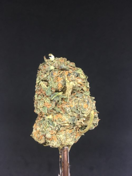 ogkush 2 scaled - OG Kush Select AA+ Indica Leaning Hybrid Weed Delivery Toronto - Cannabis Delivery Toronto - Marijuana Delivery Toronto - Weed Edibles Delivery Toronto - Kush Delivery Toronto - Same Day Weed Delivery in Toronto - 24/7 Weed Delivery Toronto - Hash Delivery Toronto - We are Kind Flowers - Premium Cannabis Delivery in Toronto with over 200 menu items. We're an experienced weed delivery in Toronto and we deliver all orders in a smell-proof, discreet package straight to your door. Proudly Canadian and happy to always serve you. We offer same day weed delivery toronto, cannabis delivery toronto, kush delivery toronto, edibles weed delivery toronto, hash delivery toronto, 24/7 weed delivery toronto, weed online delivery toronto