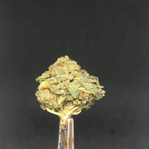 ogkush 4 scaled - OG Kush Select AA+ Indica Leaning Hybrid Weed Delivery Toronto - Cannabis Delivery Toronto - Marijuana Delivery Toronto - Weed Edibles Delivery Toronto - Kush Delivery Toronto - Same Day Weed Delivery in Toronto - 24/7 Weed Delivery Toronto - Hash Delivery Toronto - We are Kind Flowers - Premium Cannabis Delivery in Toronto with over 200 menu items. We're an experienced weed delivery in Toronto and we deliver all orders in a smell-proof, discreet package straight to your door. Proudly Canadian and happy to always serve you. We offer same day weed delivery toronto, cannabis delivery toronto, kush delivery toronto, edibles weed delivery toronto, hash delivery toronto, 24/7 weed delivery toronto, weed online delivery toronto