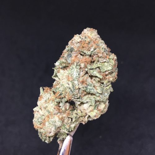 starburst 1 scaled - Starburst Og B.C Craft AAAA Flower 50/50 Hybrid Weed Delivery Toronto - Cannabis Delivery Toronto - Marijuana Delivery Toronto - Weed Edibles Delivery Toronto - Kush Delivery Toronto - Same Day Weed Delivery in Toronto - 24/7 Weed Delivery Toronto - Hash Delivery Toronto - We are Kind Flowers - Premium Cannabis Delivery in Toronto with over 200 menu items. We're an experienced weed delivery in Toronto and we deliver all orders in a smell-proof, discreet package straight to your door. Proudly Canadian and happy to always serve you. We offer same day weed delivery toronto, cannabis delivery toronto, kush delivery toronto, edibles weed delivery toronto, hash delivery toronto, 24/7 weed delivery toronto, weed online delivery toronto